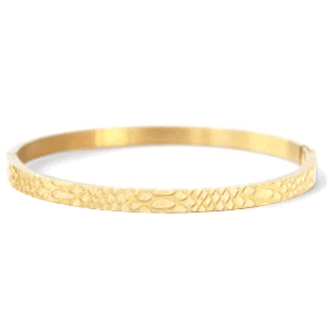 Stainless steel bangle armband snake print goud