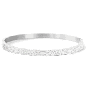 Stainless steel bangle armband snake print zilver
